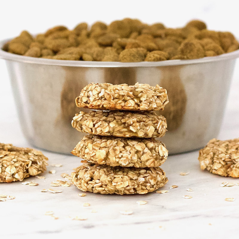 These simple, 2-ingredient Banana Oatmeal Cookies are the perfect, healthy, homemade dog treat for your sweet fur babies! They are vegan, gluten-free, low-fat, oil-free, and contain no added sugar.